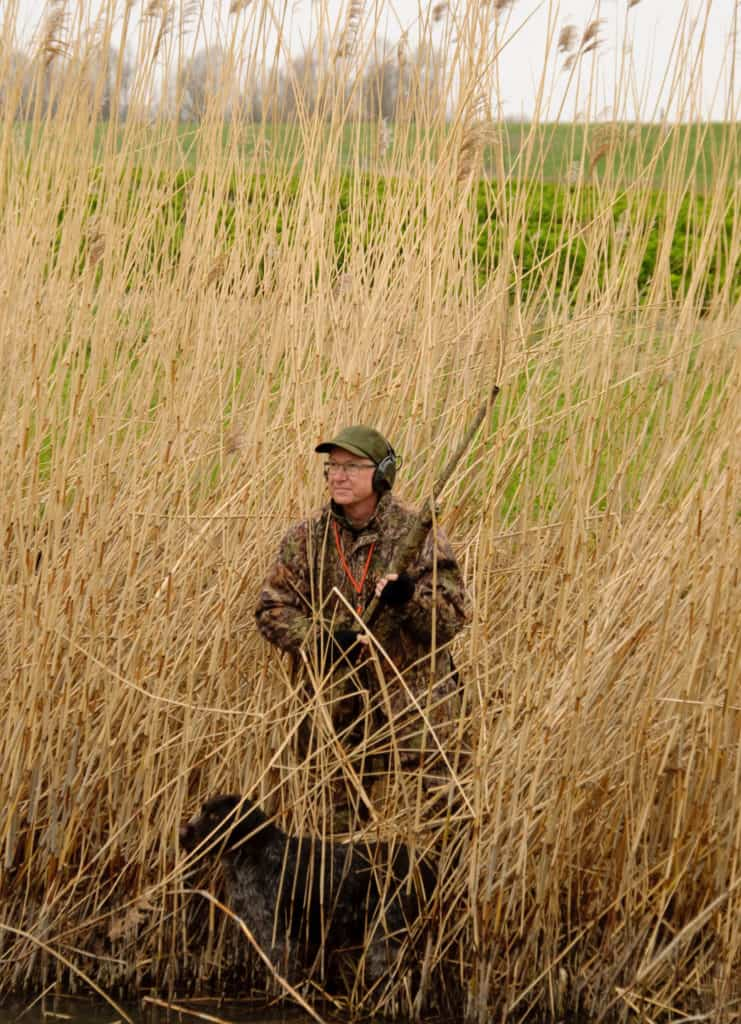 Is jagen duurzaam wildbeheer?