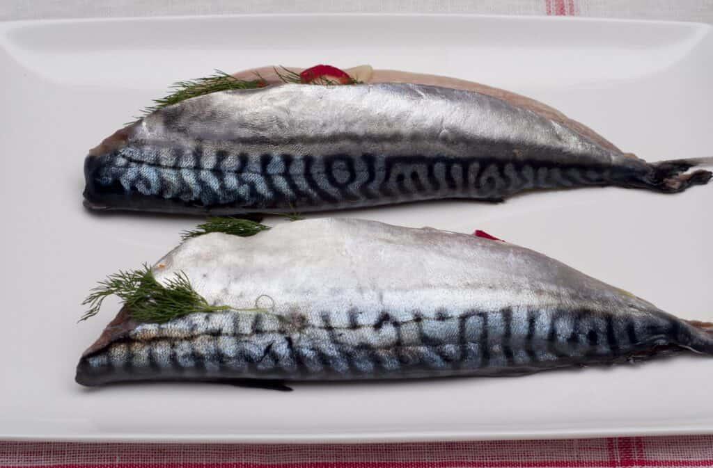 Makreel uit de oven