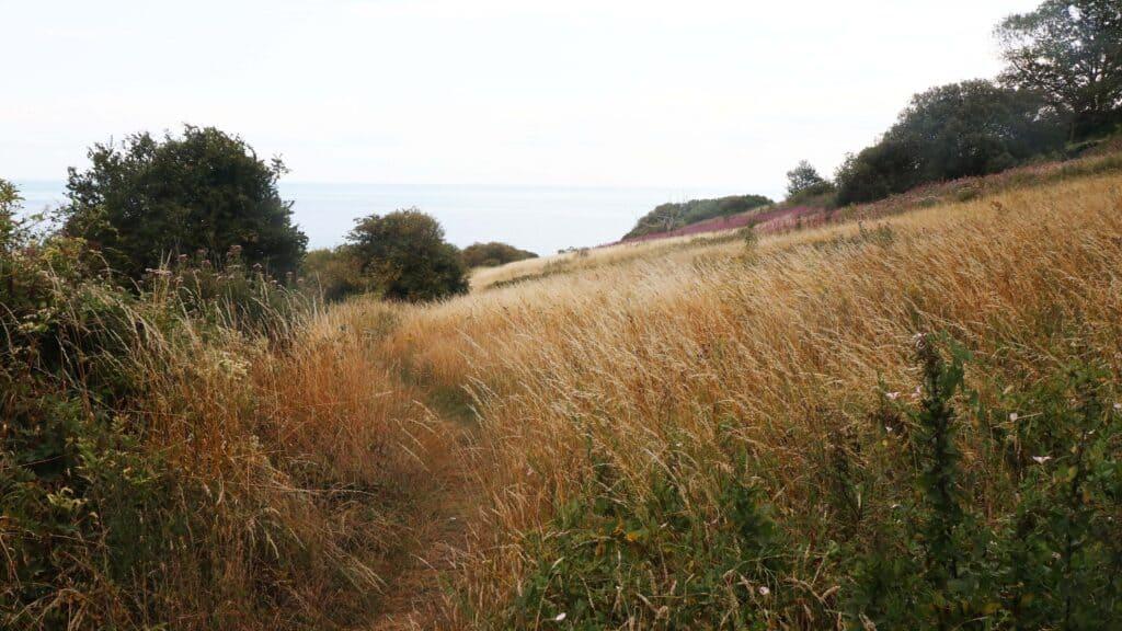 Wandelen over smalle paden